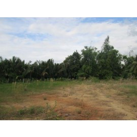 River land for sale,3km from Kampot town