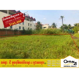 Land For Sale (P-000518) Near Borey New World