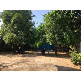 Land for Sale $200000 (ប្លង់រឹង)